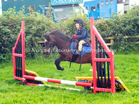 Show Jumping Competiton