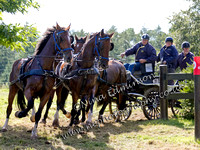 Lowther Carriage Driving Trials 2014