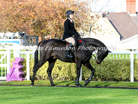 Racehorse to Hunter