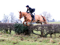 Jumping 1 Hedge