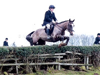 Jumping 2 Hedge